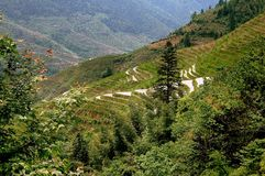 Longsheng, China: Terraced Rice Paddies Royalty Free Stock Photos