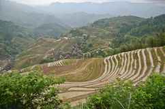 Longsheng paddy fields in China Stock Images