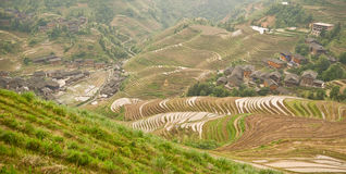 Longsheng paddy fields in China Royalty Free Stock Photography
