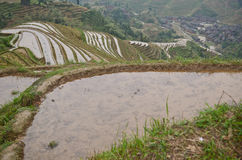 Longsheng paddy rice fields Royalty Free Stock Photos