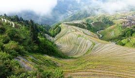 Longsheng Reis-Terrassen lizenzfreies stockbild