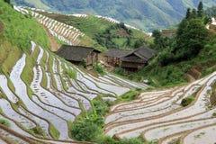 Longsheng Reis-Terrassen; China stockbild