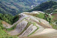 Longsheng Reis-Terrassen; China stockfotos