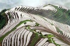Longsheng Rice Terraces; Chiana Royalty Free Stock Images