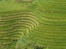Longsheng Rice Terraces, China Stock Photo