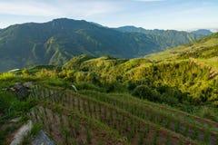Longsheng ryż tarasów krajobraz w Chiny fotografia stock