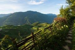 Longsheng ryż tarasów krajobraz w Chiny zdjęcie stock