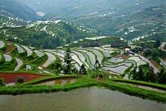 Longsheng terrace in guangxi in China Stock Photos