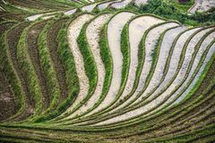 Longsheng Village Royalty Free Stock Photography