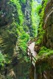 Longshuixia Fissure Gorge in Wulong country, Chongqing, China Royalty Free Stock Photo