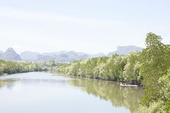 Longtail boat moored in the mangrove canals. Stock Photography
