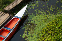 Longtail fartyg royaltyfri fotografi