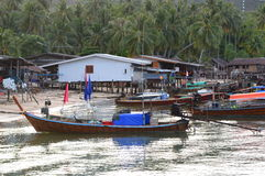 Longtail łodzie przy głównym schronieniem Koh mook Tajlandia Fotografia Stock