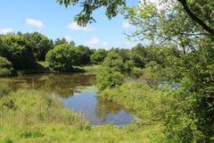 Longton Brickcroft naturreserv, Lancashire Fotografering för Bildbyråer