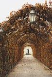 Longue allée rouge d'automne avec la lanterne photo stock