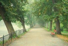 Longue allée d'arbre avec un sentier piéton en brouillard Photos libres de droits