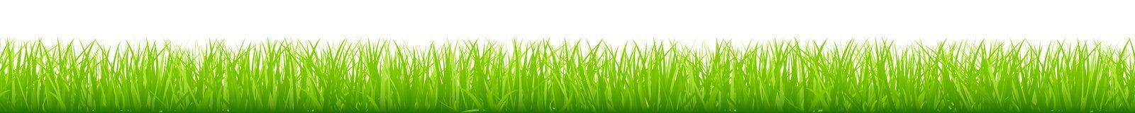 Longue bannière horizontale de pré vert droit graphique illustration libre de droits
