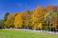 Longue barrière blanche Farm Field And Autumn Trees Images libres de droits