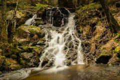 Longue exposition d'une belle cascade dans une forêt dans Mojonavalle Canencia Madrid photos stock