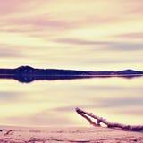 Longue exposition de rivage de lac avec le tronc d'arbre mort tombé dans la soirée d'automne de l'eau après coucher du soleil Image libre de droits