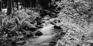 Longue exposition de rivière infrarouge Images libres de droits