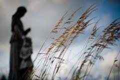 Longue herbe, cimetière Images stock
