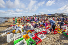 Longue poissonnerie de Hai image libre de droits