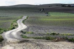 Longue route Photographie stock