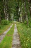 Longue route faite de panneaux concrets, Trebon Images stock