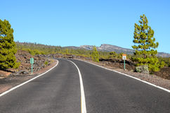 Longue route isolée Images stock