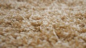 Longue texture de tapis de pile banque de vidéos