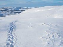 Longue traînée des empreintes de pas fraîches dans la neige Photo libre de droits