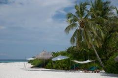 Longues de las calesas en la playa Foto de archivo libre de regalías