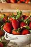 Longues fraises organiques crues de tige Images libres de droits