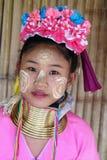Longues personnes de tribu de cou Photo stock