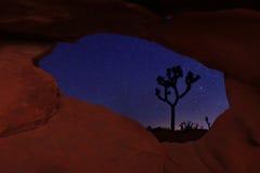 Longues traînées d'étoile d'exposition en Joshua Tree National Park Photos stock