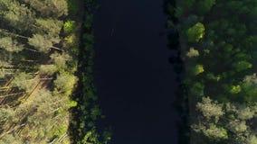 Longueur aérienne de bourdon sur le petit lac de forêt avec la réflexion des arbres dans l'eau banque de vidéos