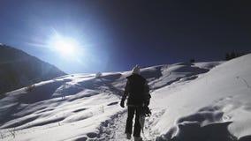Longueur d'aventure de femme de surfeur, marchant aux montagnes neigeuses d'alpes banque de vidéos