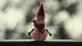 Longueur de hd de jardin d'hiver de bonhomme de neige banque de vidéos