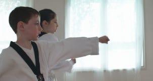 Longueur de mouvement lent des jeunes garçons pratiquant des arts martiaux banque de vidéos