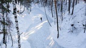Longueur du jeune patinage de glace femelle sur le lac congelé Les gens appréciant le jour ensoleillé en hiver marchant et patina banque de vidéos