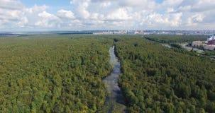 longueur 4k aérienne de rivière de courbe en parc de ville banque de vidéos
