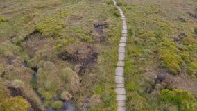 Longueur 4K aérienne du parc national de route de passage de serpent et de secteur maximal environnant en été 2019 banque de vidéos