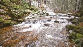 Longueur régulière de came, rivière de montagne, courant, crique avec la rapide en automne en retard, hiver tôt avec la neige, go clips vidéos