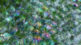 Longueur succulente de hd de fond de bulles de savon d'usine personne banque de vidéos