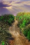longueurs Nature et horizontaux photos libres de droits