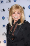 Loni Anderson Royalty Free Stock Photography