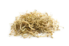 Lonicera japonica-Traditional Chinese medicine Stock Image
