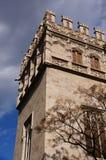 Lonja y consulado del mar de Valencia V Stock Images