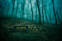 Lonley bench Stock Photography